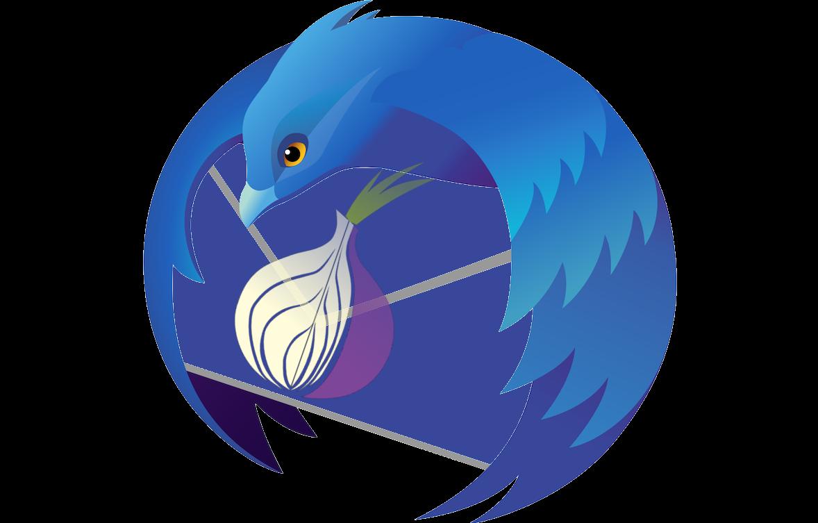 TorBird